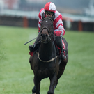 Aintree Ace: Total Recall is one of the obvious choices to put a wager on for the Aintree Grand National