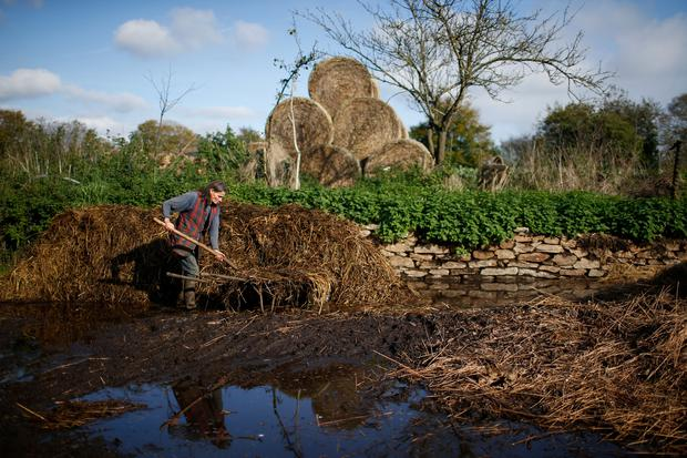 Laurence, companion of French farmer Jean-Bernard Huon, unloads manure on land near their farm in Riec-sur-Belon, France, October 25, 2017.
