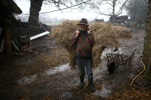 French farmer Jean-Bernard Huon, 70, carries hay at his farm in Riec-sur-Belon, France, January 27, 2018. REUTERS/Stephane Mahe.