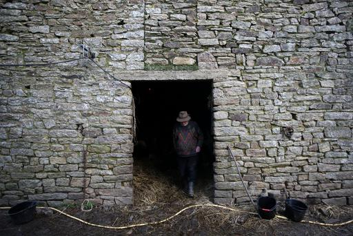 French farmer Jean-Bernard Huon, 70, works at his farm in Riec-sur-Belon, France, February 1, 2018. REUTERS/Stephane Mahe