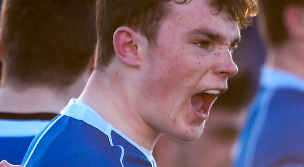 St Mary's College's Eoin Carey. Photo: Sportsfile