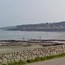 Fountainstown Beach. Pic: Google Maps