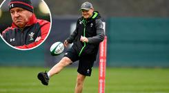 Joe Schmidt and (inset) Warren Gatland
