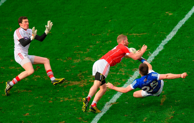 Thomas Galligan of Cavan has his shot blocked by Ruairi Deane of Cork Photo: Sportsfile