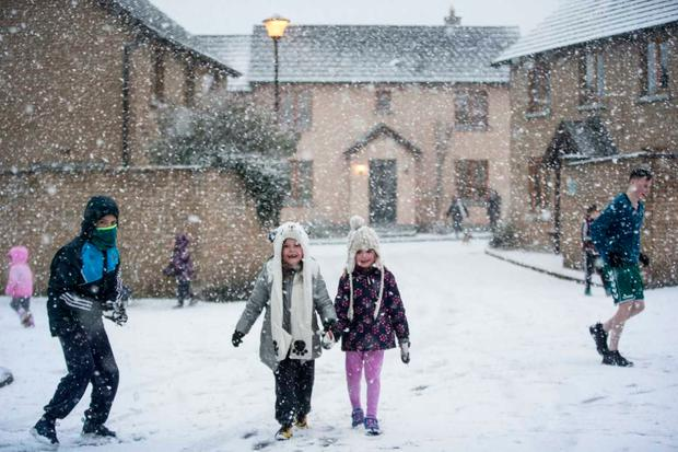 Snowfall in Lusk, Dublin (Photo: Mark Condren)