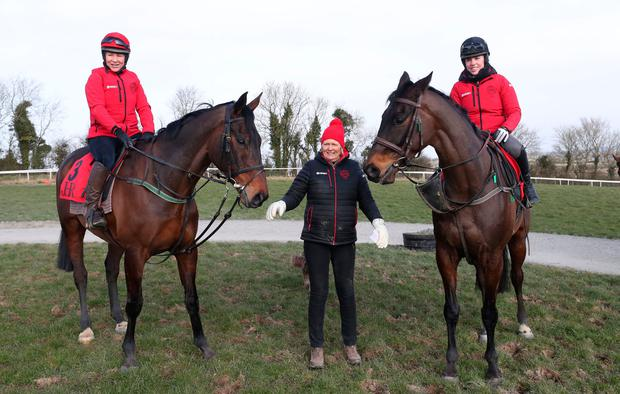 Trainer Jessica Harrington with Gold Cup hopes Our Duke (Tracy Piggott) and reigning champion Sizing John (Kate Harrington) at her Commonstown Stables in Moone, Co Kildare. Photo: PA