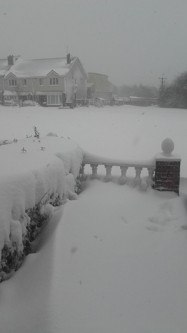 Very heavy snow in Kilmuckridge Co.Wexford. Photo: Derek Vaughan