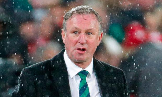Michael O'Neill: Photo: Sportsfile