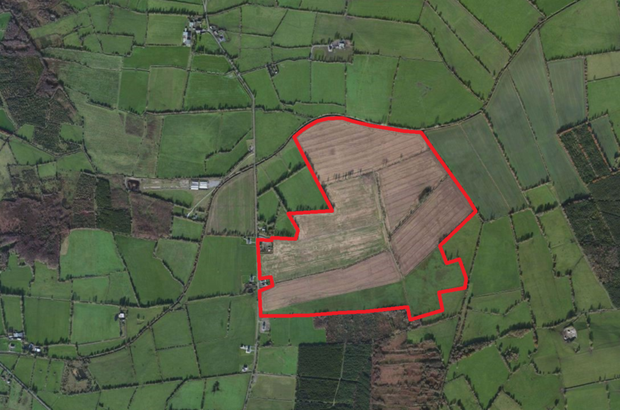 Farm Land Approx 76.89 Hectares (190 Acres) at Rhode, Co. Offaly. Image Lisney