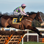 Faugheen. Photo: Sportsfile