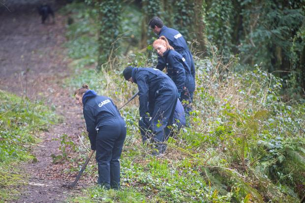 Gardai searching at Mitchell's Wood, Castlemartyr, Co Cork, for evidence relating to the disappearance of Tina Satchwell. Photo: Michael Mac Sweeney/Provision.