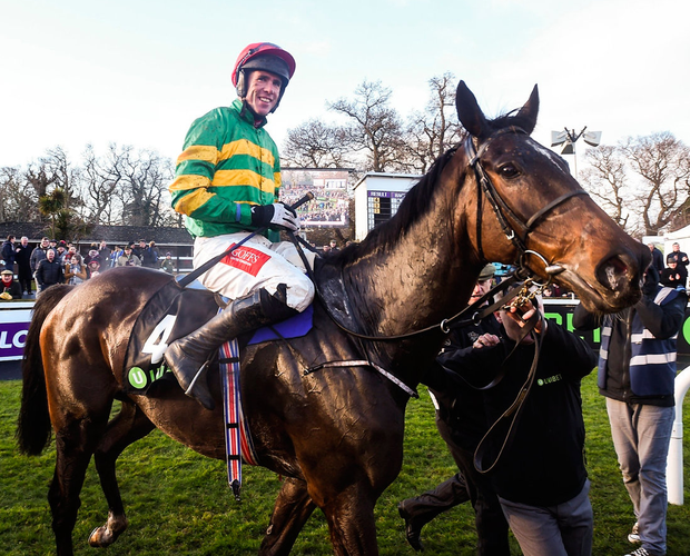Edwulf, with Derek O'Connor up, enters the parade ring after winning the Irish Gold Cup at Leopardstown. Photo: David Fitzgerald/Sportsfile