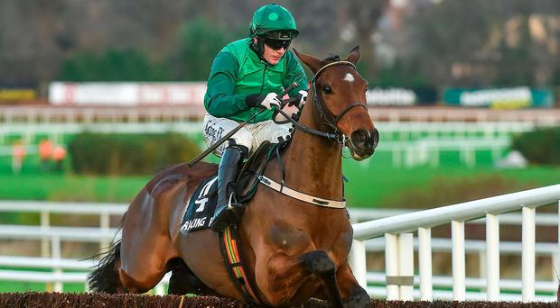 Footpad, with Paul Townend on board, in action at Leopardstown in December - Ruby Walsh will be back in the saddle at Cheltenham today. Photo: Matt Browne/Sportsfile