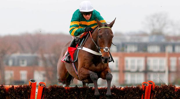 Champion Hurdle favourite Buveur D'Air, with Barry Geraghty up, demonstrates his slick hurdling technique on the way to victory at Sandown last month. Photo: PA