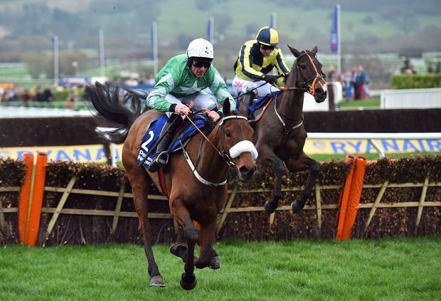 Presenting Percy ridden by Irish jockey Davy Russell jumps the last hurdle on his way to winning The Pertemps Network Final Handicap Hurdle Race on the third day of last year's Cheltenham Festival. Photo: AFP/Getty Images
