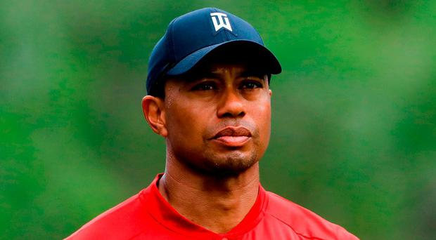 Tiger Woods backed to challenge for another green jacket. Photo: Sam Greenwood/Getty Images