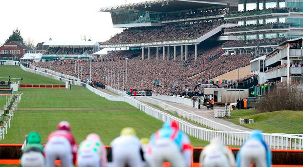 General view of runners and riders in the Sky Bet Supreme Novices Hurdle