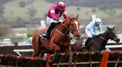 Samcro ridden by jockey Jack Kennedy coming home to win the Ballymore Novices' Hurdle during Ladies Day of the 2018 Cheltenham Festival at Cheltenham Racecourse.