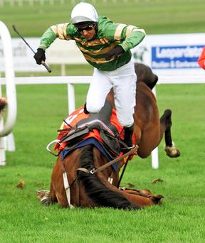 Former top National Hunt jockey Charlie Swan has seen his training company go into voluntary liquidation. Mr Swan is pictured above taking a tumble on Istabraq, with whom he won three Champion Hurdles