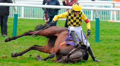 Our picture sequence shows Ruby Walsh's fall from Al Boum Photo which ruled the jockey out of the remainder of the Cheltenham Festival. Photos: Grossick Racing Photography