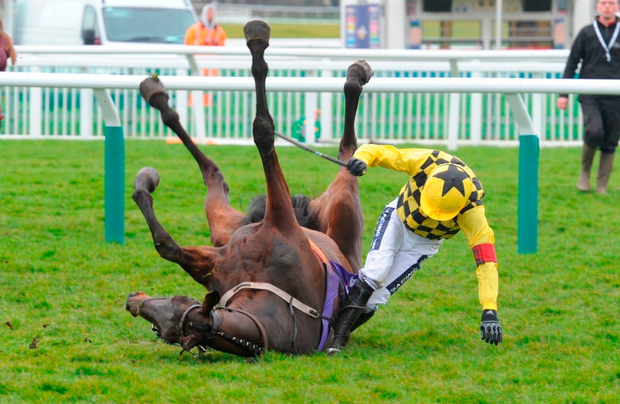 RUBY WALSH FALL THAT RULES HIM OUT OF THE FESTIVAL WITH A SUSPECTED BROKEN LEG at CHELTENHAM 14/3/18 Photograph by Grossick Racing Photography 0771 046 1723
