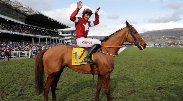 Townend To Partner Festival Favourite