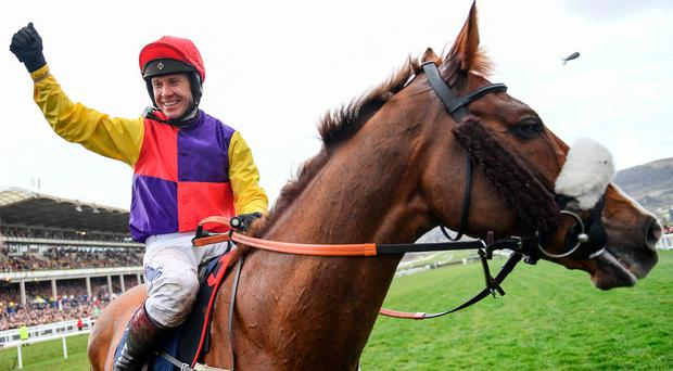 Bulmers agree deal to sponsor the 'Magners Cheltenham Gold Cup' for four years