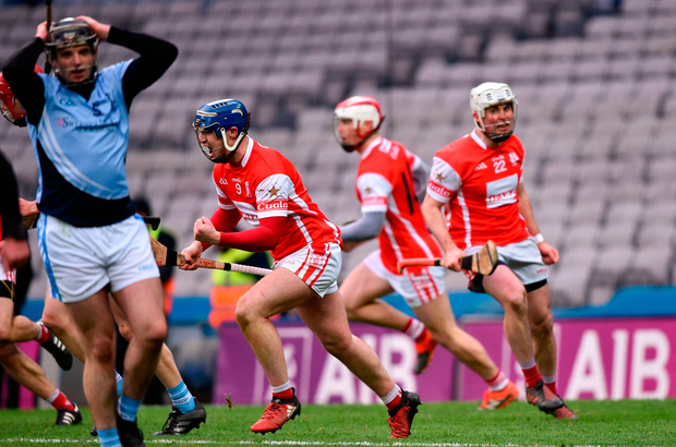 Seán Treacy of Cuala celebrates his side's last minute equalising goal