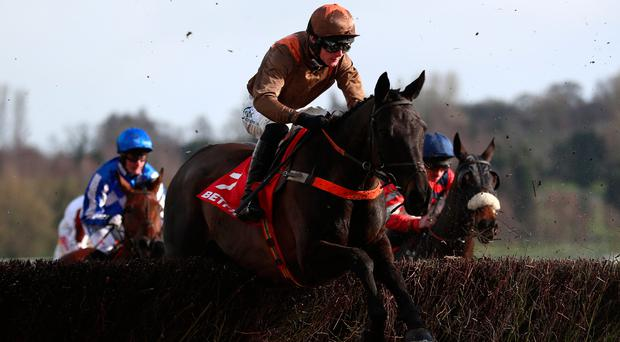 Regal Flow, ridden by Sean Houlihan, before winning the Betfred Midlands Grand National at Uttoxeter. Photo: PA