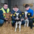 Shane Randles, Salesian Agricultural College pictured with Kilrush Community School pupils Padraig Donoghue and Thomas Kelly at a careers open day in the Salesian Agricultural College, Pallaskenry, Co Limerick. Photo O'Gorman Photography.