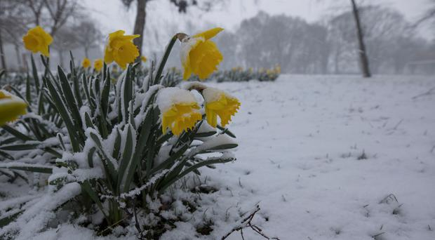 Finally! Here is when you can expect milder Spring weather... but it's not all good news