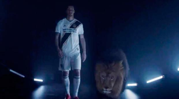 LA Galaxy Announce Ibrahimovic Signing With LA Times Advert