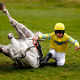 Jerry McGrath hits the deck after the Cork jockey's mount, Wallace Spirit, takes a tumble at the final flight in yesterday's Be Wiser Insurance Novices' Hurdle at Newbury which was won by Oliver Sherwood's Euxton Lane. Photo: Alan Crowhurst/Getty Images