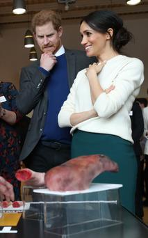 Prince Harry and Meghan Markle look at some prosthetic limbs made by the Titanic FX company during a visit to Catalyst Inc science park in Belfast where they met some of Northern Ireland's brightest young entrepreneurs. PRESS ASSOCIATION Photo. Picture date: Friday March 23, 2018. See PA story ROYAL Harry. Photo credit should read: Niall Carson/PA Wire