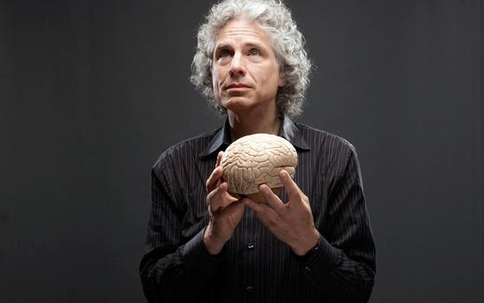 POSITIVE: Author Steven Pinker's new book deserves to be widely read.