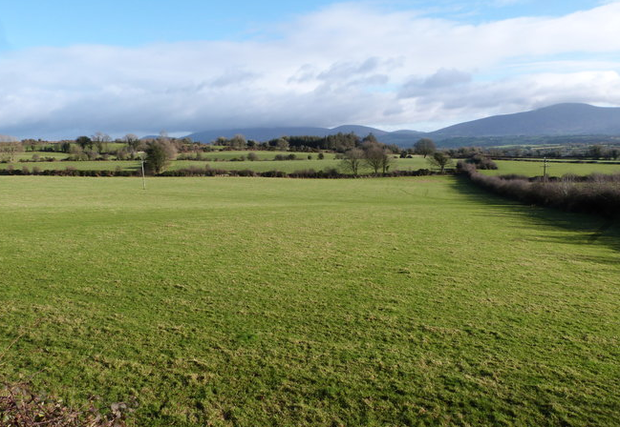An 82ac holding at Graiguenamanagh, Co Kilkenny sold under the hammer of Ed Donohoe making €847,000 or €10,300/ac.Image: Donohoe Town and Country