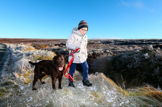 Kuba Wolanin (8) from Saggart takes a walk with his dog Toby at Kippure, Co Wicklow