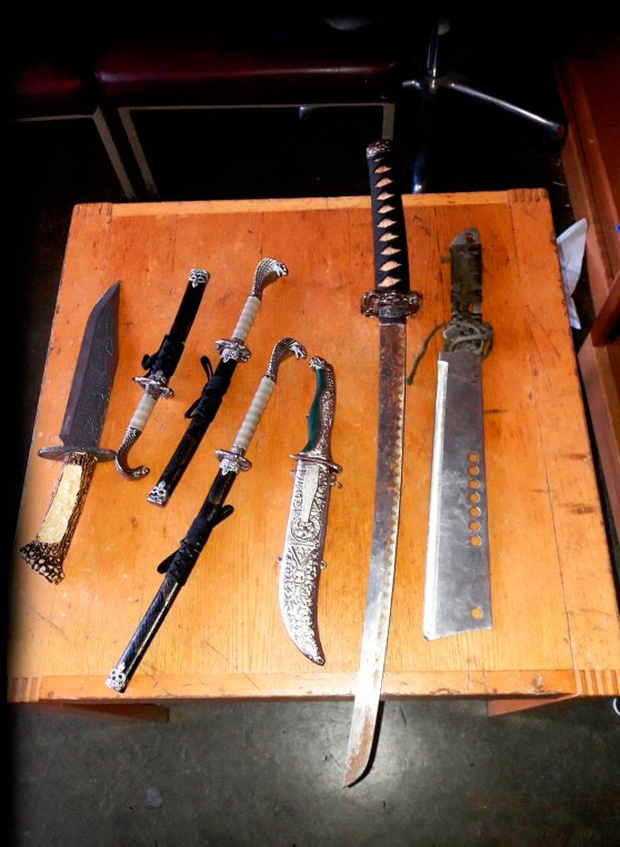 Gardai found weapons including a samurai sword as part of their operation targeting a criminal organisation