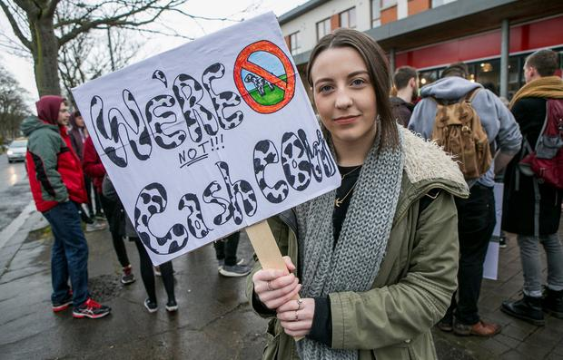 Communications Student Lauren Rossiter from Tipperary protests on Shanowen Rd near DCU. Photo: Kyran O'Brien