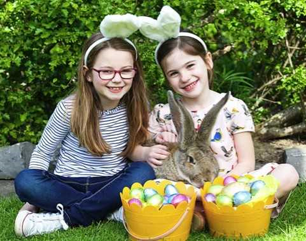 Easter at Dublin Zoo