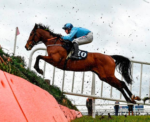 Our Dougal, with Robbie Power up, jumps the first on the way to winning the BoyleSports Novice Handicap Steeplechase at Fairyhouse yesterday. Photo: Seb Daly/Sportsfile