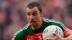 Mayo's Keith Higgins. Photo: Sportsfile