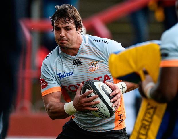 The talented Francois Venter can make his mark in the Pro14 with the Cheetahs. Photo: Sportsfile