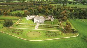 Castletown Cox estate comes with 340 acres of grassland and tillage. Photo: Knight Frank
