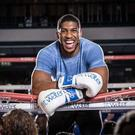 World heavyweight champion Anthony Joshua speaks to Independent.ie