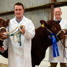 Double success for Macroom, Co Cork herd with Nial O'Connell from Toames East, Macroom showing Female Champion of Show, Highfield Sultana, while Noel McSweeney is holding Highfield Shirley, the second prizewinner in the same show class