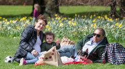 Little Kai Pierpoint Sheridan (22 mths) pictured enjoying a picnic with his parents, Nicola and Dan at St. Ann's Park, Raheny yesterday