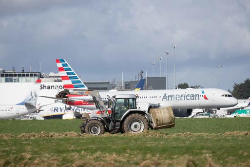 Local farmers cutting sileage at Shannon Airport's 400 acres today to alleviate the fodder crisis. Photograph by Eamon Ward.