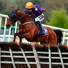 Wicklow Brave and Patrick Mullins jump the last on their way to winning the Champion Hurdle at the Punchestown Festival last year. Photo: Seb Daly/Sportsfile