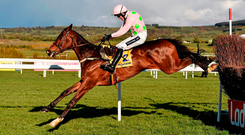 Douvan, on the way to winning the Ryanair Novice Chase at Punchestown in 2016 under Ruby Walsh, should be a class above the field in today's Champion Chase. Picture credit: Cody Glenn / Sportsfile